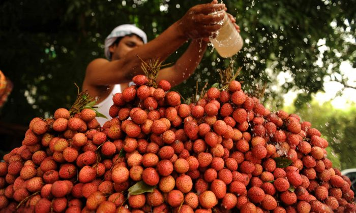 An Indian fruit seller pours water over lychees at a roadside cart in Allahabad on May 29, 2010. (Dpitendu DuttaAFP/Getty Images)