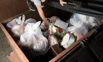 Pizza Shop Owners Reach Out to Homeless Who 'Inspected' Their Trash Every Day