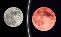 Early Summer 'Strawberry Full Moon' Will Rise on June 17–Will Bring 'Focus' and 'Spiritual Expansion'