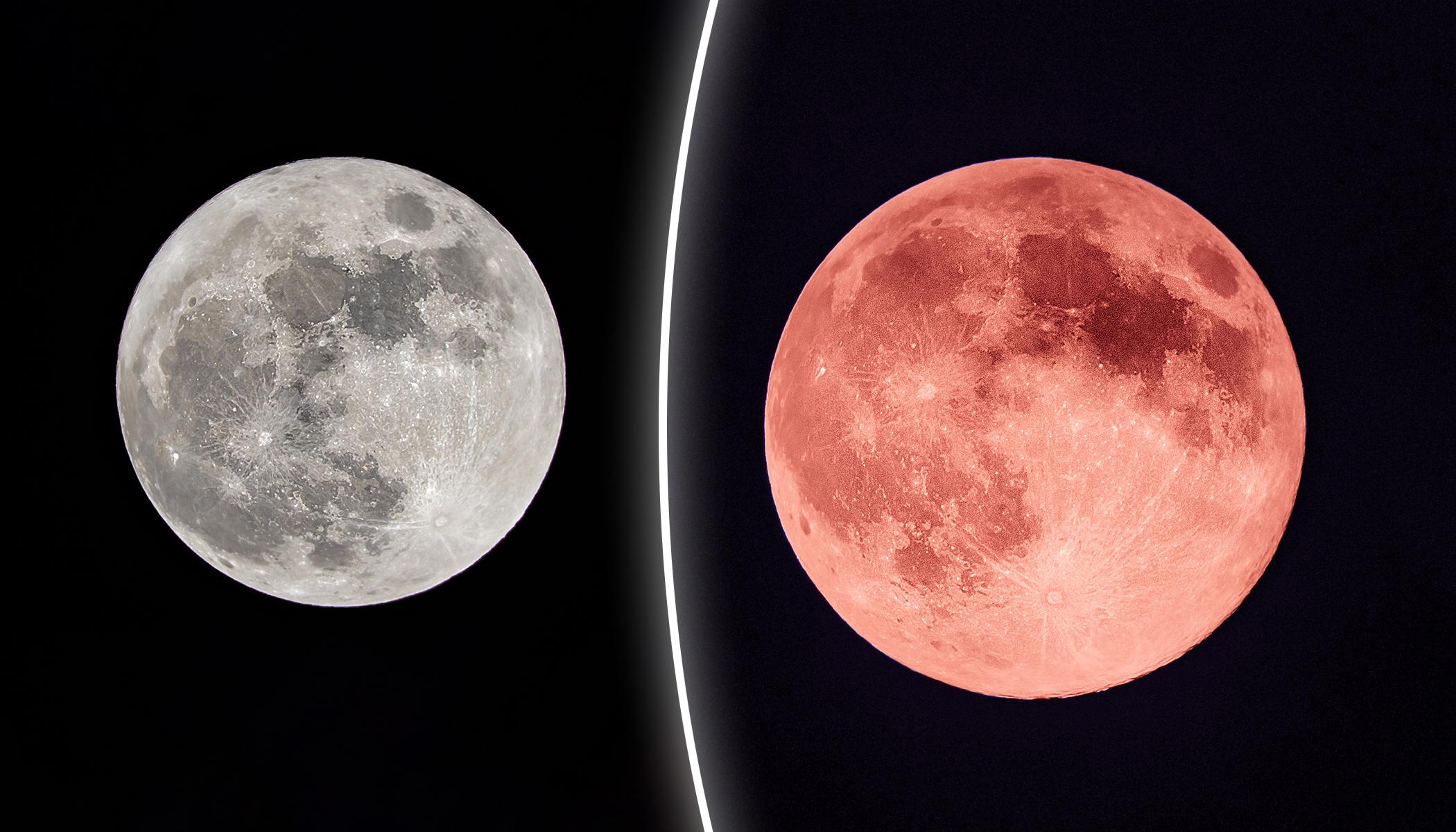присоединилась клубничная луна фото уже сделаем все