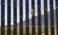Mexico Detains Nearly 800 Illegal Immigrants, Government Says
