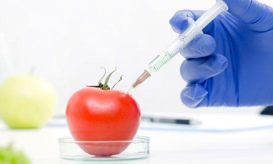 8 Reasons to Avoid GMOs
