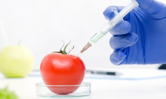 Genetically modified foods come with known—and unknown—risks. (Proxima Studio/Shutterstock)
