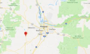 Missing Oregon Woman, 3-Year-Old Son Found Dead in Remote Area: Reports