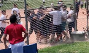 Adults Brawl at Colorado Baseball Game for 7-Year-Olds: Police