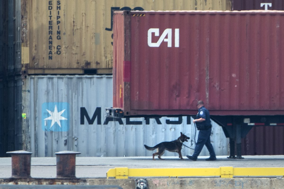 An officer with a dog inspects a container