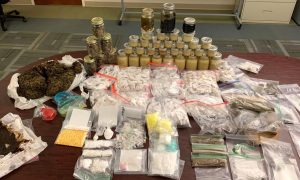 Citrus Sheriff Makes Largest Drug Bust in Its History, Valued at Nearly $1 Million