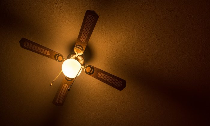 Ceiling fan. (blackbirdvisual1/Pixabay)