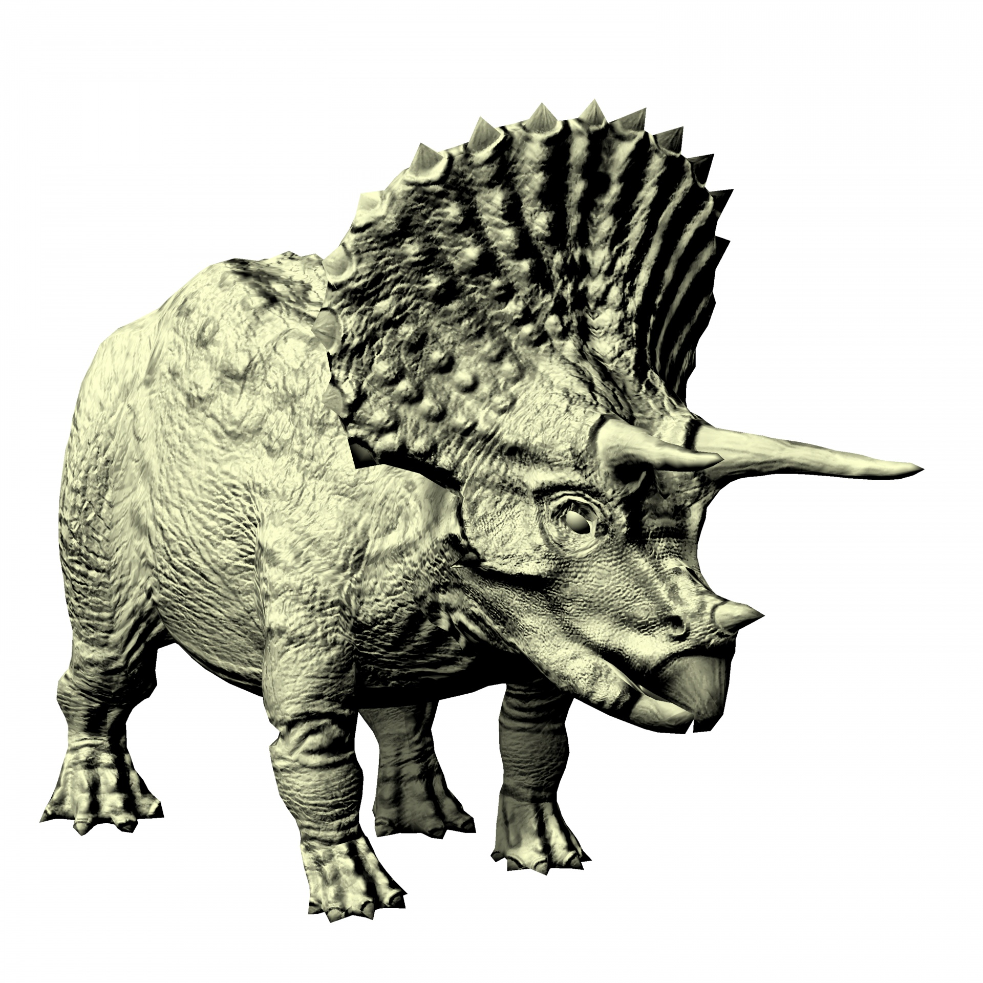 Scientists Unearth HUGE Adult Triceratops Skeleton From Denver Construction Site–68 Million Years Old