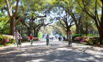 Savannah: Sweet and Spooky