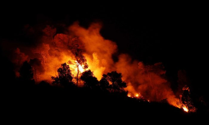 Trees burn during the forest fire west of Tarragona on June 27, 2019. (Albert Gea/Reuters)