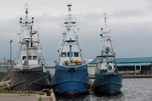 Whaling ships which are set to join the resumption of commercial whaling at anchor at a port in Kushiro