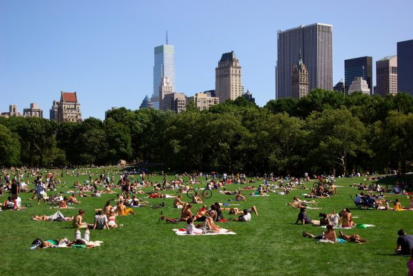 Summer picnickers in Central Park