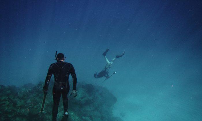 Scuba divers in water.