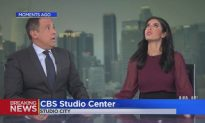 News Anchor Hides Under Desk During California Earthquake: Video