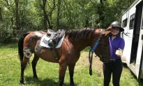 A Teen's Mission to Rescue Horses
