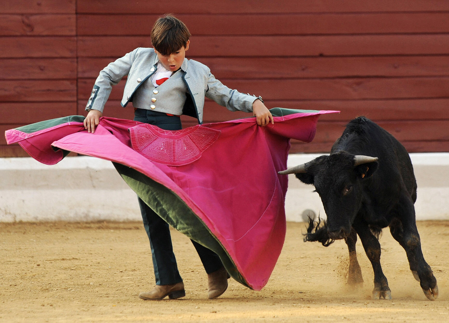'Cowardly' Bullfighter Amateurs Criticized for Taking on Calves