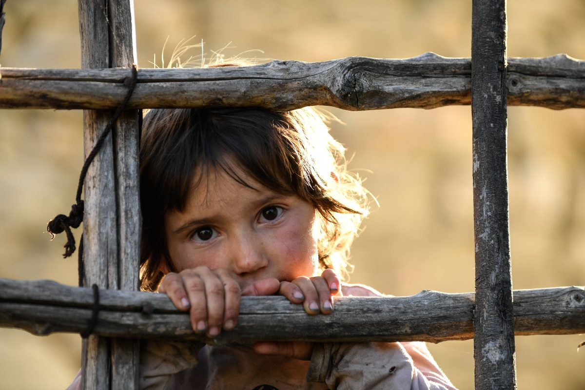 small child looking through fence