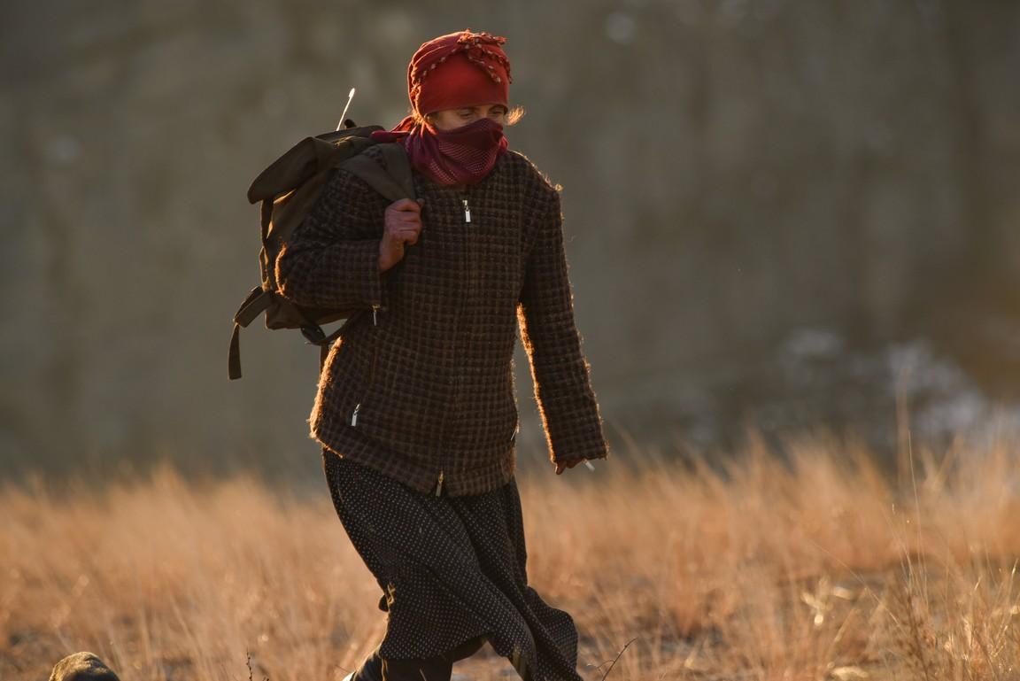 woman in red scarf walking in field