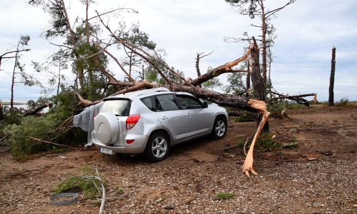 An uprooted tree fell on a vehicle in Greece after a violent storm hit on July 11, 2019. (Still Image from video/Reuters)
