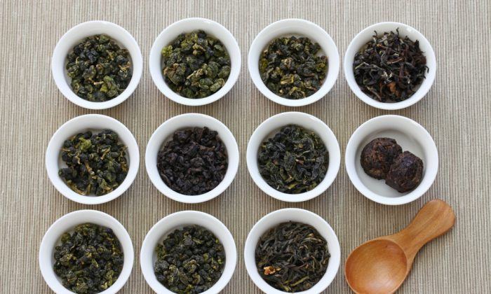 Oolong teas like these samples from Taiwan represent a middle ground in the processes that create black tea and green tea. All teas (not including herbal teas or tisanes) are made from  the camellia sinensis plant. (Shutterstock)