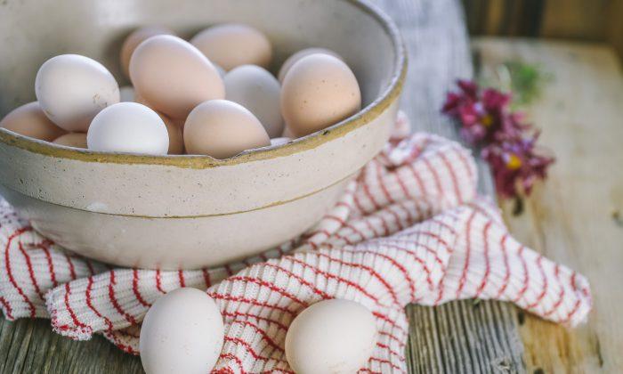 egg-bowl