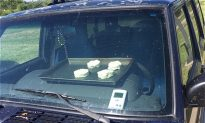 National Weather Service Bakes Biscuits in Parked Car, Issues Warning Ahead of Heatwave