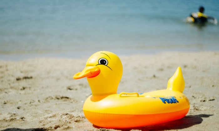 Stock image of a floating duck. (Jeerayut Rianwed/Shutterstock)