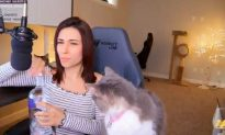 Gamer Alinity Under Investigation After Throwing Cat, Spitting Vodka Into Mouth During Livestream