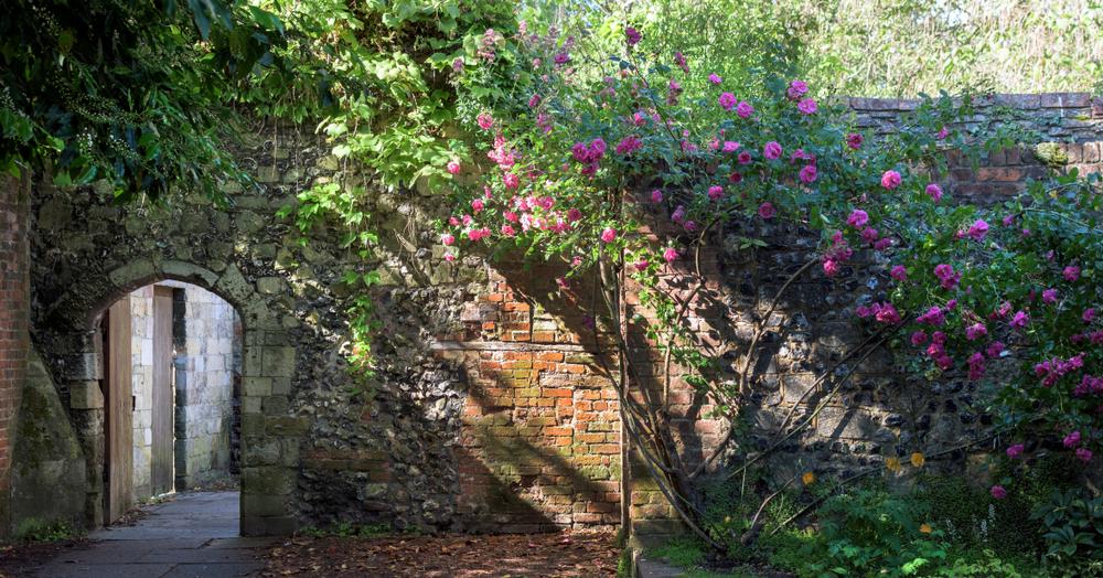 In the Footsteps of Jane Austen