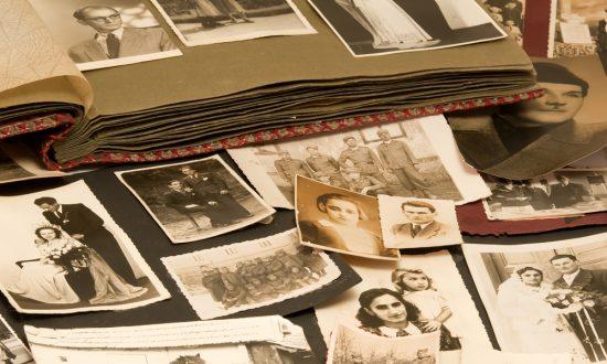 Book Review: 'Families: Where We Each Begin'