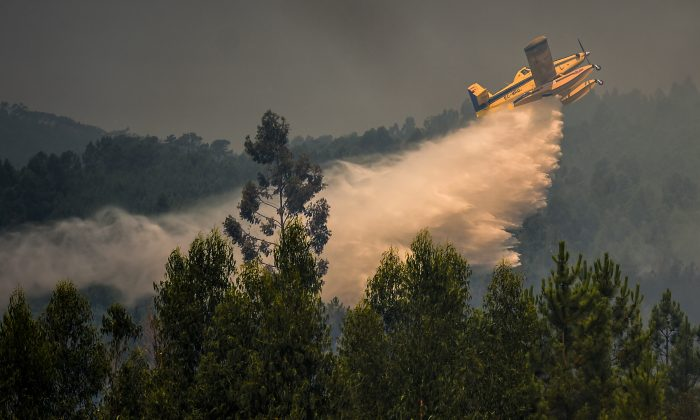 A firefighter plane drops water over a wildfire at Relva in Macao, central Portugal, on July 21, 2019.  (Patricia de Melo Moreira/AFP/Getty Images)