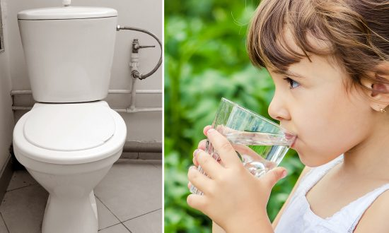 People Are Drinking Toilet Water, and This Craziest Trend Is Catching On