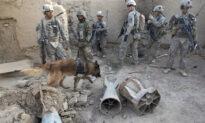 British K-9 Officer Saves SAS Soldiers Ambushed by Terrorists, 'Rips' Out Jihadi's Throat
