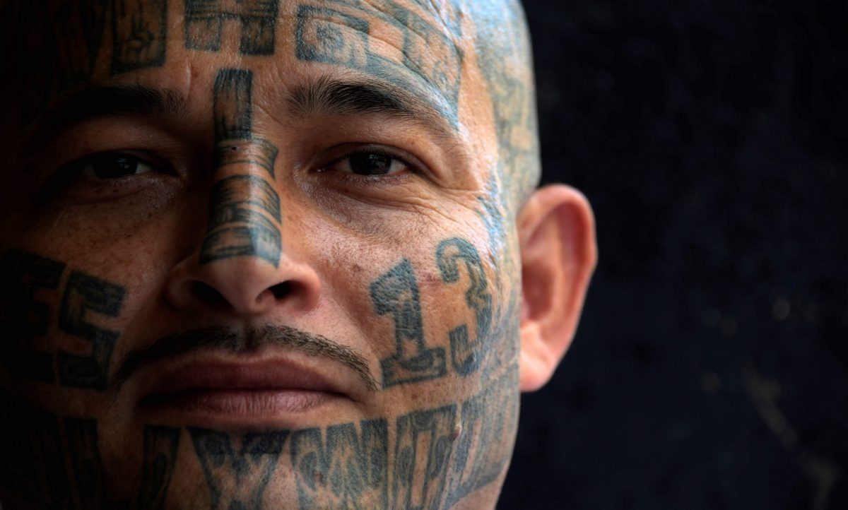 a member of the MS-13 gang is pictured