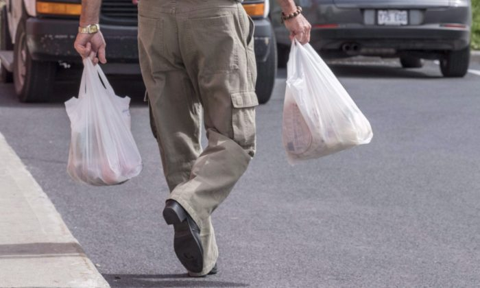 A shopper leaves a grocery store carrying his groceries in plastic bags in Brossard, Que., on Aug. 30, 2016. Shoppers at Sobeys Inc. grocery stores will soon need to bring their own bags to pack their purchases or lug them home in paper bags as the chain moves to phase out plastic bags by February 2020. (Paul Chiasson/The Canadian Press)