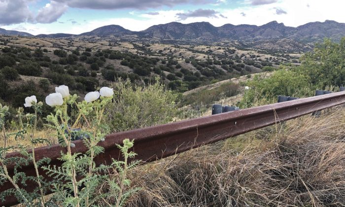 A view of the eastern slope of the Santa Rita Mountains in Arizona on May 12, 2019. Canadian firm Hudbay Minerals Inc. plans an open pit copper mine in the area. (AP Photo/Anita Snow)