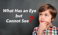 Riddle Time: What Has an Eye but Cannot See? This One Is Going to Prick Your Brain