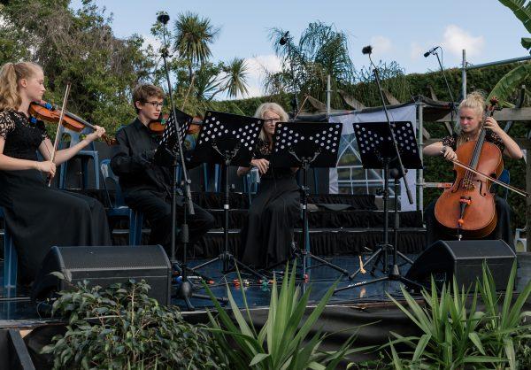 String musicians quartet