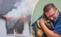'My Dog Is Everything to Me': Australian Man Rushes Into Burning Home to Rescue His Dog