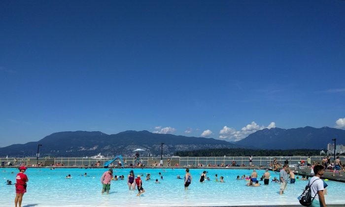 People beat the heat at a swimming pool. (Ruth Hartnup/Flickr)