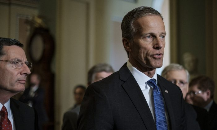 Sen. John Thune (R-S.D.) on Capitol Hill on April 30, 2019. (Pete Marovich/Getty Images)