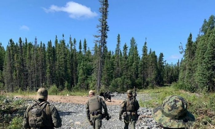 RCMP search an area near Gillam, MB in this photo posted to their Twitter page on July 30, 2019. (Twitter, Manitoba RCMP, The Canadian Press)