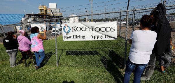 Koch Food Illegal Workers