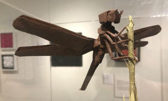 Origami: A Relationship Between Mathematics and Art