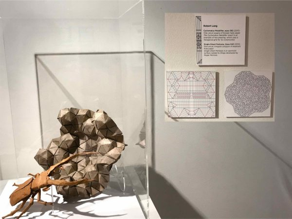 Beetle origami