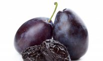 Dried Plums Slow Bone Loss in Aging