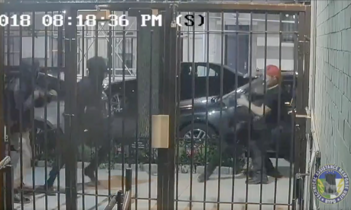 Footage showed a brawl between Antifa and the Proud Boys in New York City on Oct. 12, 2018. (NYPD News)
