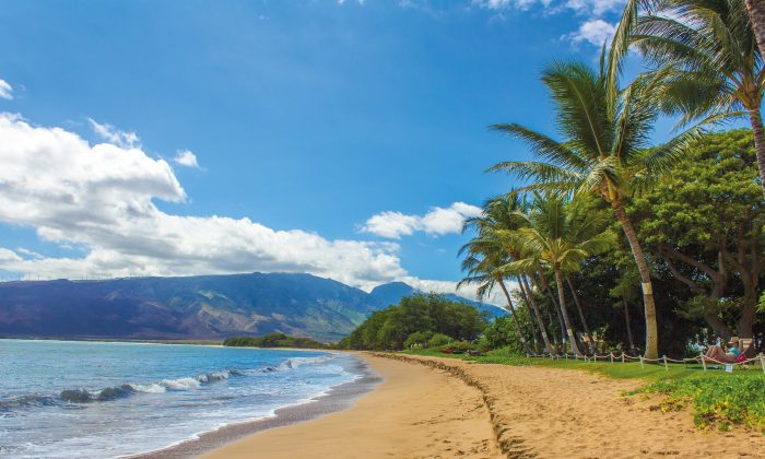 A file photo of a beach in Hawaii. The island group celebrates its 60th anniversary as a U.S. state on Aug. 21, 2019. (Bettina Nørgaard/Pixabay)