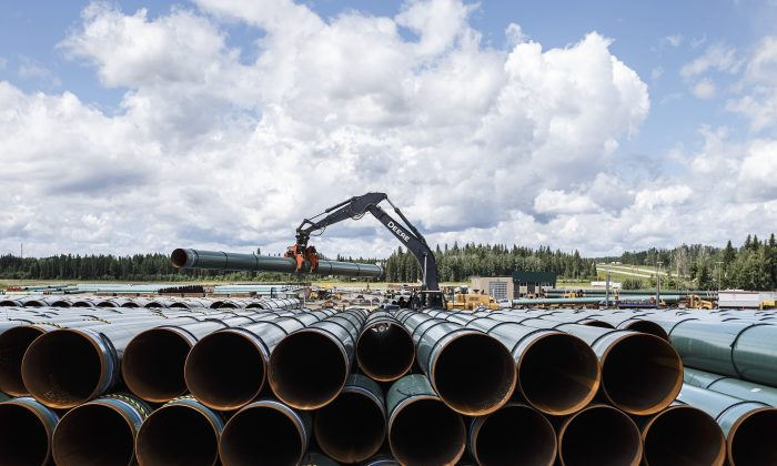 Pipe for the Trans Mountain project is unloaded in Edson, Alta. on June 18, 2019. (Jason Franson/The Canadian Press)